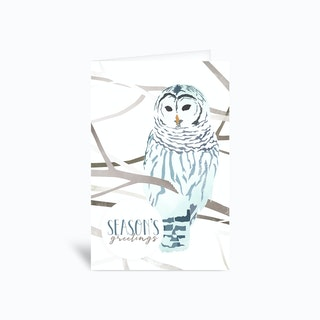 Snow Owl Greetings Card