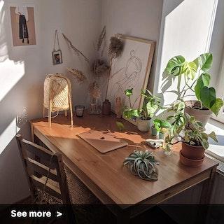 Rustic & Plants Vibe