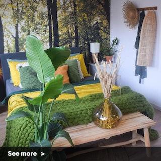 Sunflower Sanctuary
