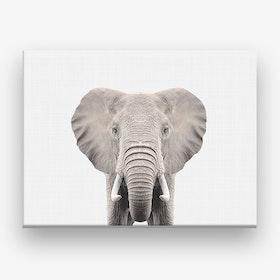Elephant X Canvas Print