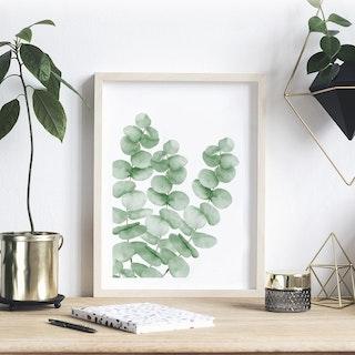 Herbarium Art🌿