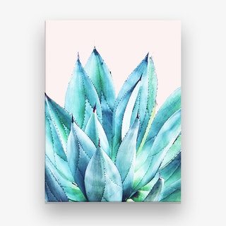 Agave Vibe Canvas Print