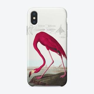 American Flamingo   Audubon Birds Phone Case