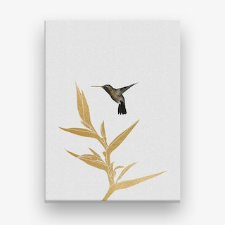 Hummingbird & Flower II Canvas Print