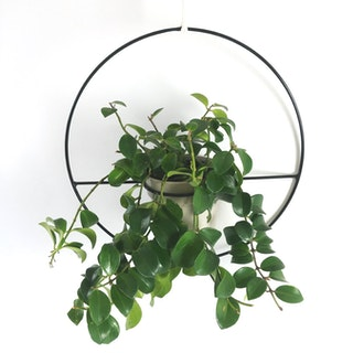 Orbis Hanging Planter