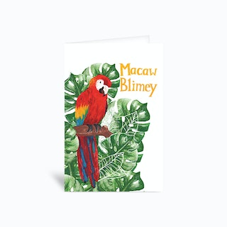 Macaw Blimey Sambulll Greetings Card