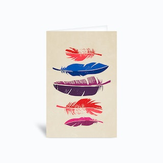 Feathers Greetings Card