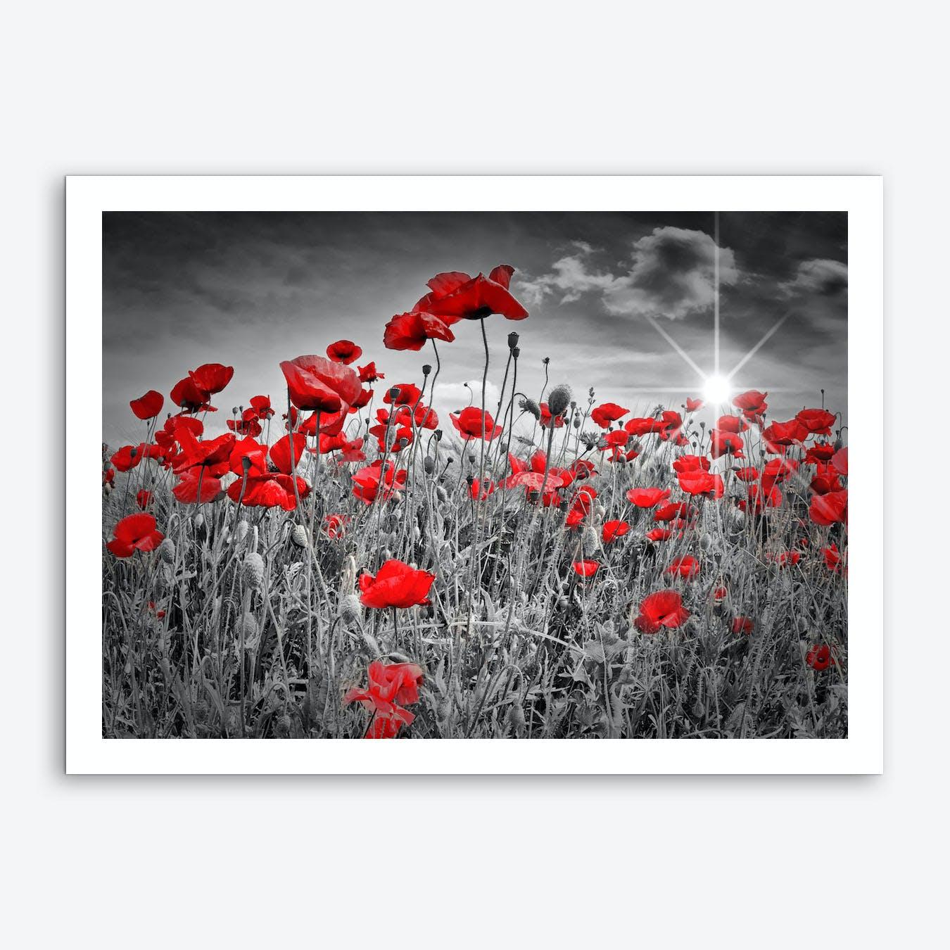 Idyllic Field of Poppies with Sun Art Print