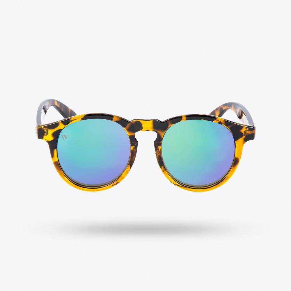 Hathi Sunglasses in Bicome & Green