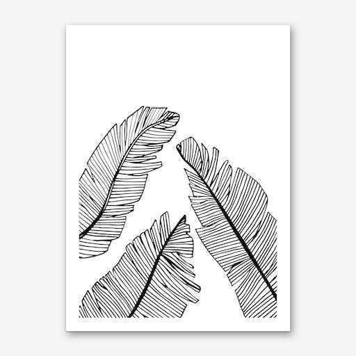 Banana Leaves II Art Print