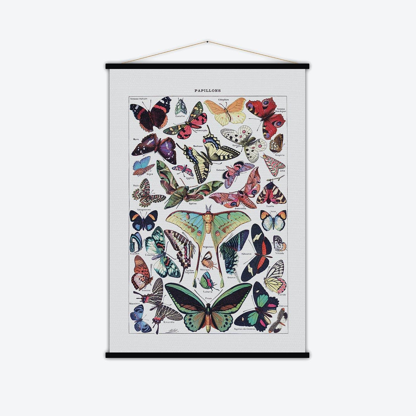 Papillons Vintage Print