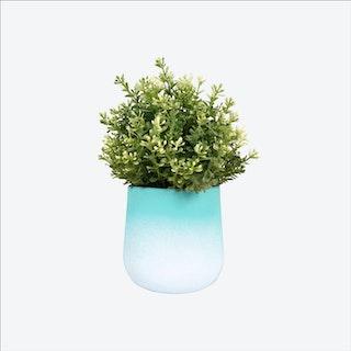 Green FlowerTop Planter – Medium