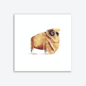 Sheep Art Print I