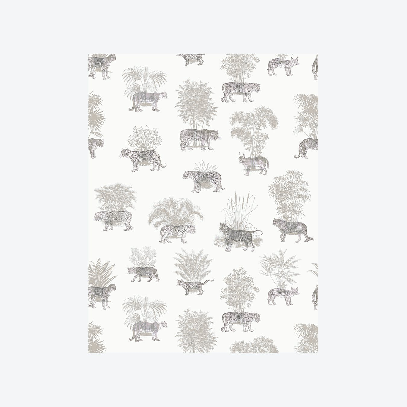 Where They Belong Tropical  Wallpaper - Grey