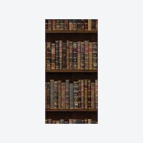 The Library (Vintage Book) Wallpaper - Original