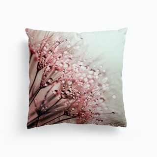 Blush Dandelion Cushion