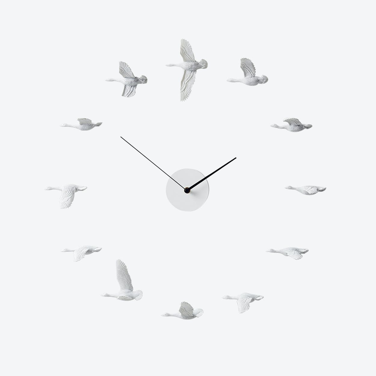Migrantbird X Clock - O Formation