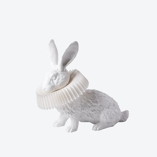 Rabbit Lamp-Squat
