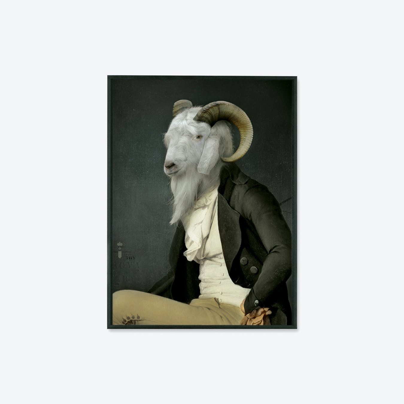 RODOLPHE Collector's Portrait