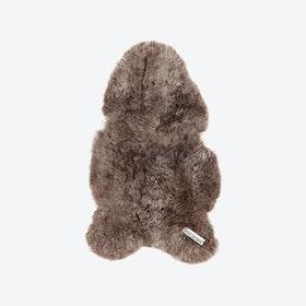 Icelandic Short Wool Sheepskin - Taupe
