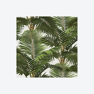 Jardin Tropical Wallpaper