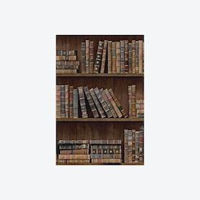 Book Shelves Wallpaper