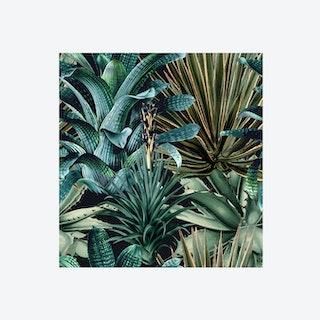 Lush Succulents Wallpaper