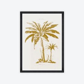Le Bananier Framed Art