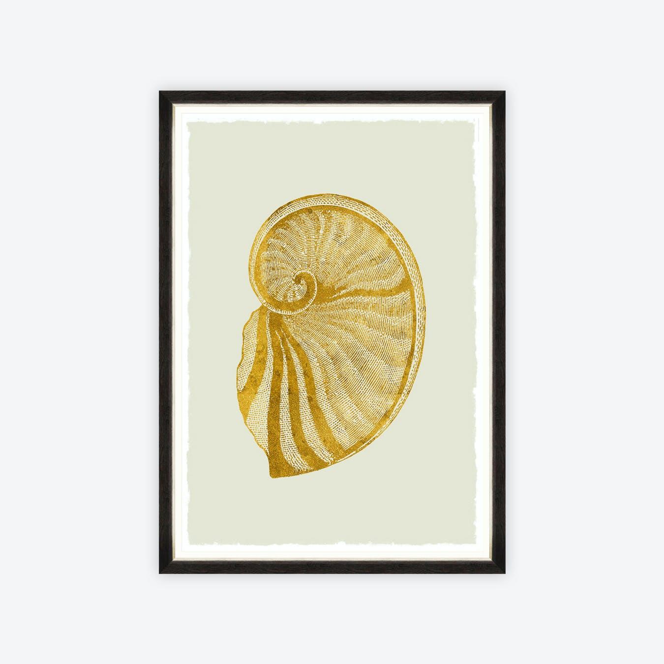 Golden Seashell II Framed Art