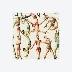 The Acrobats Wallpaper