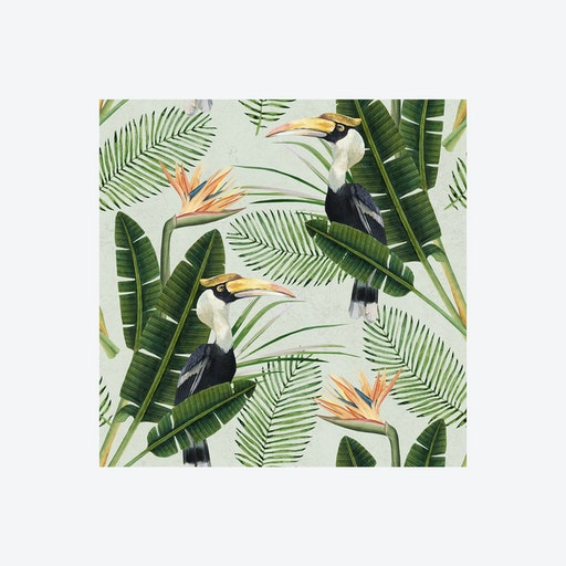 Birds of Paradise Wallpaper
