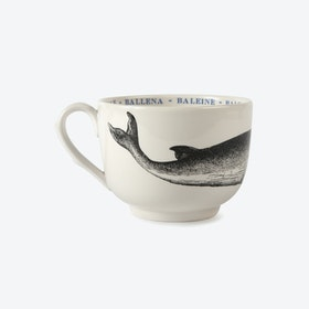 Grand Fauna Cup - Whale