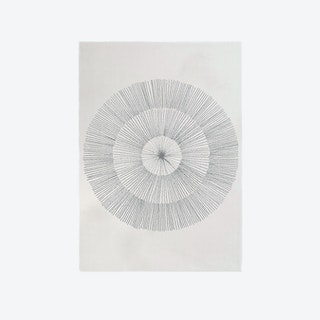 Pissenlit Grey Dandelion