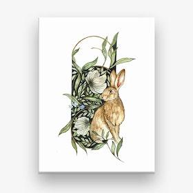 Celtic Wild Hare Canvas Print