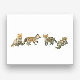 Fox Cubs Canvas Print