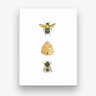 Bumblebee Family Canvas Print