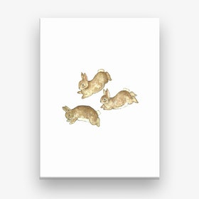 Frolicking Rabbits Canvas Print