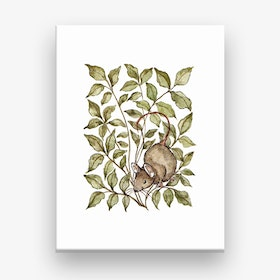 Meadow Mouse Canvas Print