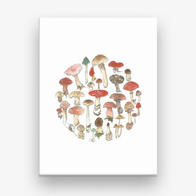 Toadstool Wheel Canvas Print