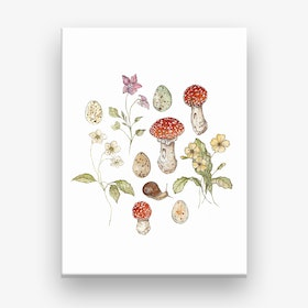 Summer Meadow Collection Canvas Print