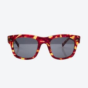 Ventura Sunglasses - Flame
