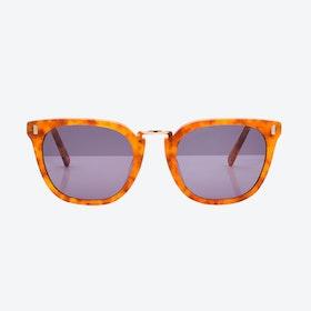 Bahia Sunglasses - Carey
