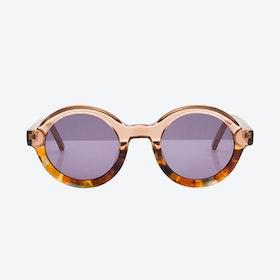 Venice Sunglasses - Champagne & Havana