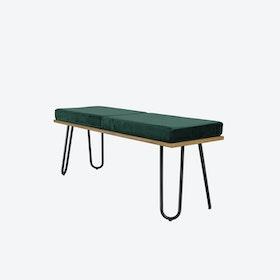 CORGI Bench in Green/Black