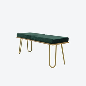 CORGI Bench in Green/Gold