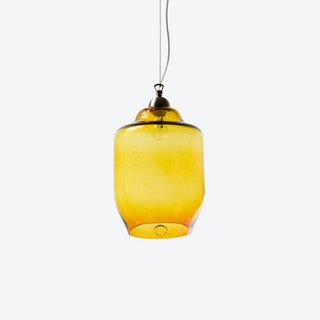 BEE Pendant Light in Honey