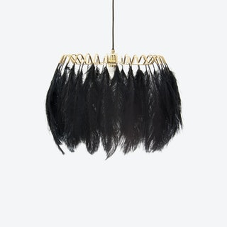 Feather Pendant Light in Black