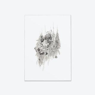 Botanical Fine Art Print