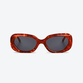 MURRAY in Biodegradable Tortoiseshell