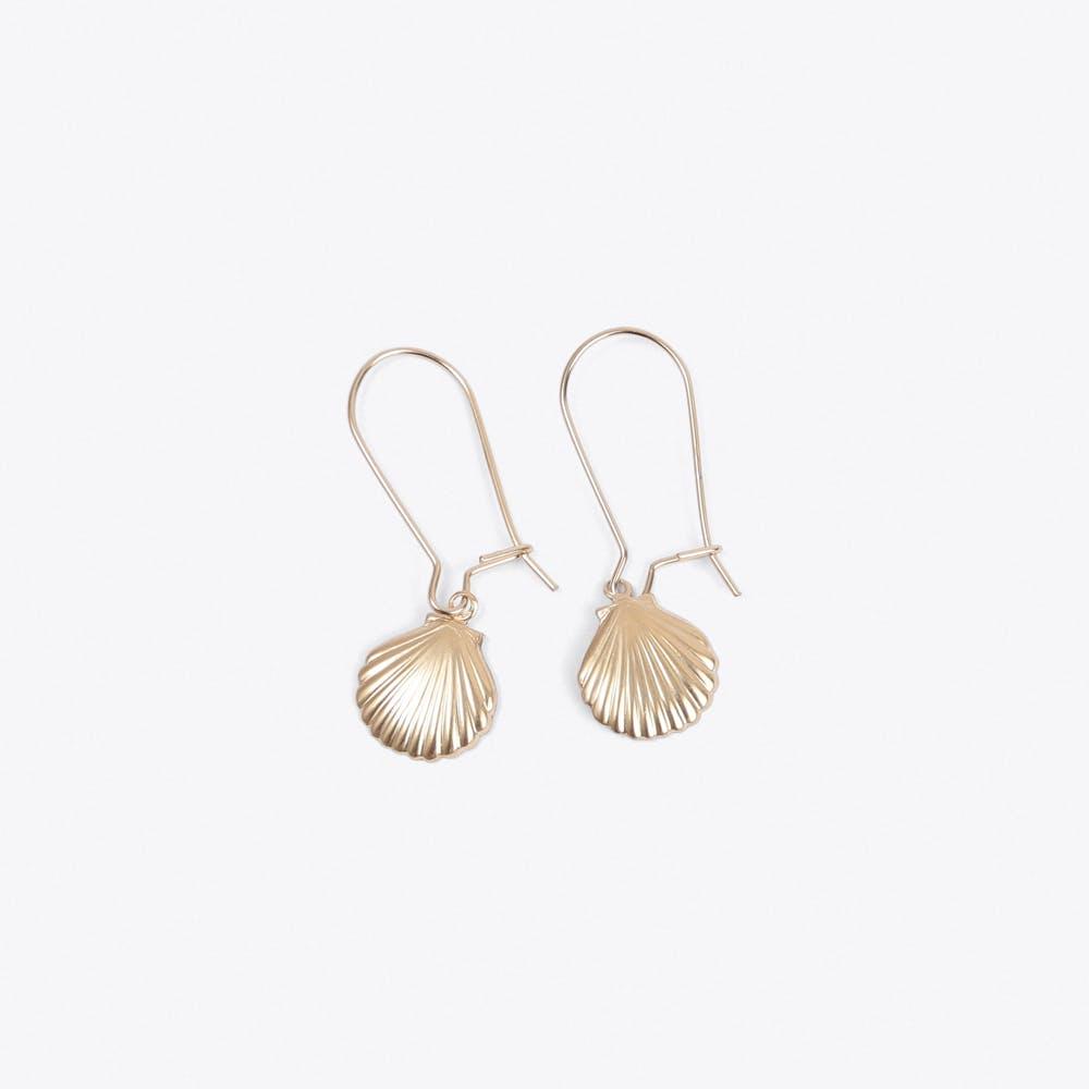 Shell Earrings in Gold